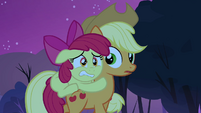 Applejack notices Apple Bloom on her back S3E06