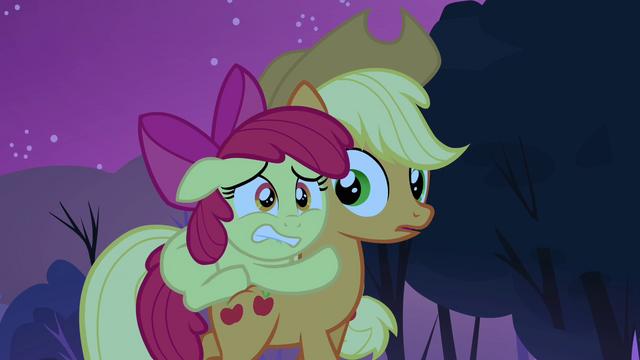 File:Applejack notices Apple Bloom on her back S3E06.png
