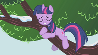 Twilight hugging tree branch S1E11