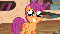 Scootaloo grin S4E15