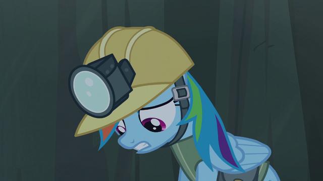 File:Rainbow Dash scared S5E8.png