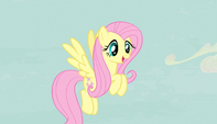 "Fluttershy ""the most pleasant place in Equestria"" S5E1"