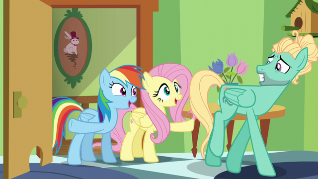 File:Fluttershy and Rainbow giving Zephyr encouragement S6E11.png