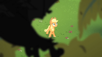 Applejack sees the bats flying S4E07