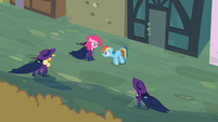 Applejack, Pinkie, Rainbow Dash and Twilight S2E08