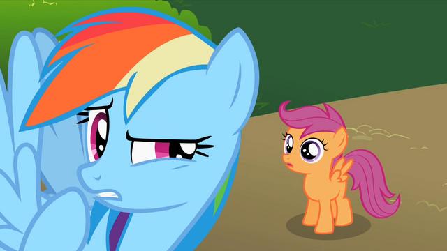 File:Rainbow Dash wait a minute S2E8.png