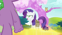"Rarity ""what did you say?"" S4E23"