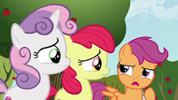 """Scootaloo """"we should probably find out"""" S6E19"""
