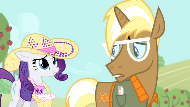 File:Rarity 'what the fuss is all about' S4E13.png
