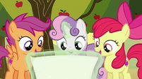 Crusaders looking at the cutie mark chart S6E19