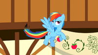 Rainbow Dash burnt tail S2E14