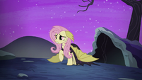 "Fluttershy ""can you ever forgive me?"" S5E21"
