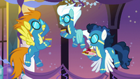 Wonderbolts having a conversation S5E15
