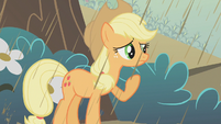 Applejack in the rain S2E01