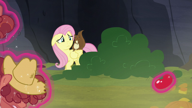 File:Fluttershy comes out of hiding S5E23.png
