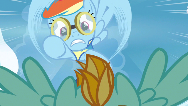 File:Rainbow Dash just can't see S3E7.png