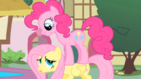 "Fluttershy ""excuse me"" S01E22"