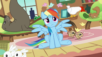 "Rainbow Dash ""it's up to me to stop them"" S03E13"