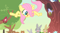 Filly Fluttershy '...love...' S1E23