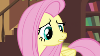 "Fluttershy ""you may never make it back"" S4E16"