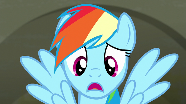 "File:Rainbow Dash ""I asked a lot of fabric questions"" S6E9.png"