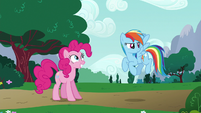 Rainbow Dash briefly looking around S6E15