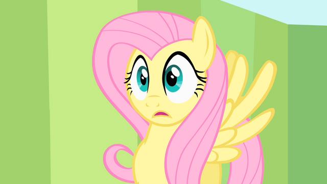 File:Shocked Fluttershy S1E20.png