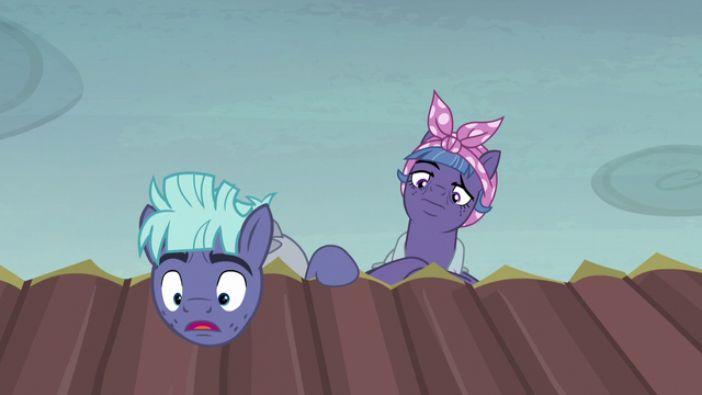 "File:McColt stallion ""you're an Alicorn!"" S5E23.png"
