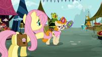 Fluttershy never seen S02E19