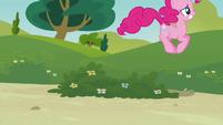 Pinkie Pie's duplicate hopping S3E03