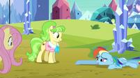 Rainbow Dash drags across the ground S03E12