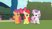 Scootaloo 'What are you, a dictionary' S2E01