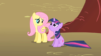 Twilight and Fluttershy lose sight of Philomena S01E22