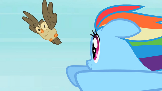 File:Rainbow Dash Owlowiscious 3 S02E07.png
