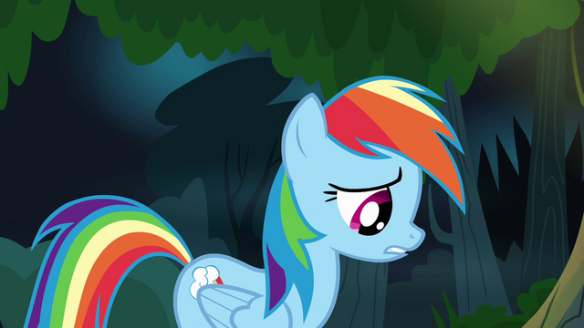 File:Rainbow Dash calming down S4E04.png