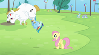 Fluttershy and Rainbow seeing Bulk flying S4E10
