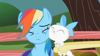 Cat's face on Rainbow's face S2E07