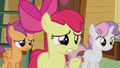 "Apple Bloom ""are you sure about that?"" S5E18.png"