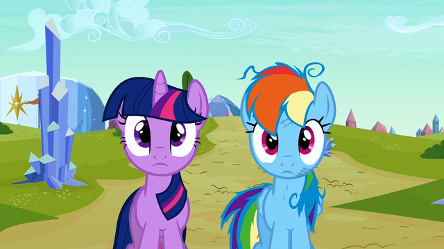 File:Twilight and Rainbow Dash blank expression S3E12.png