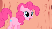 "Pinkie Pie ""you're gonna do it again"" S1E16"