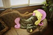Fluttershy sleeping