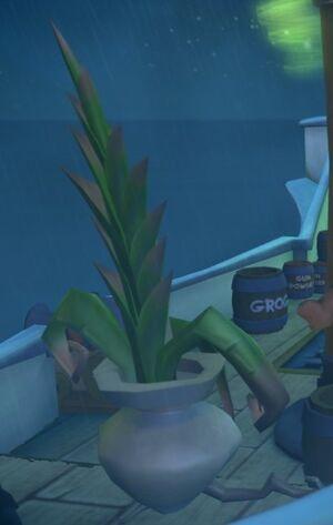 Chuck the Plant