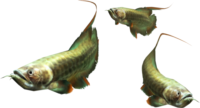 File:3rdGen-Fish Render 004.png