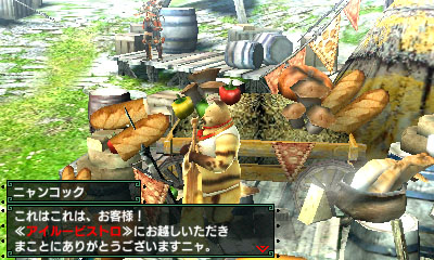 File:MHGen-Bherna Screenshot 011.jpg