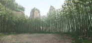 MHF-G5-Bamboo Forest Screenshot 002
