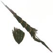 FrontierGen-Lance 010 Low Quality Render 001