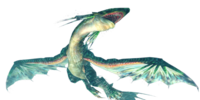 Green Plesioth Photo Gallery