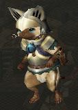 Felyne knight armor