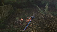 MHFU-Old Jungle Screenshot 020