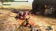 MH3U Great Jaggi vs hunter 5